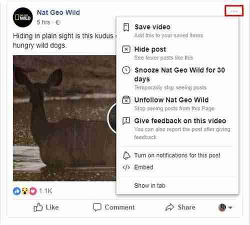 خيارات منشور فيسبوك