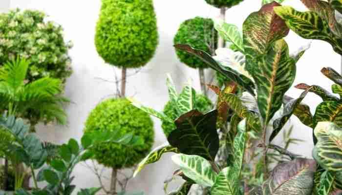 مشروع أشجار اصطناعية